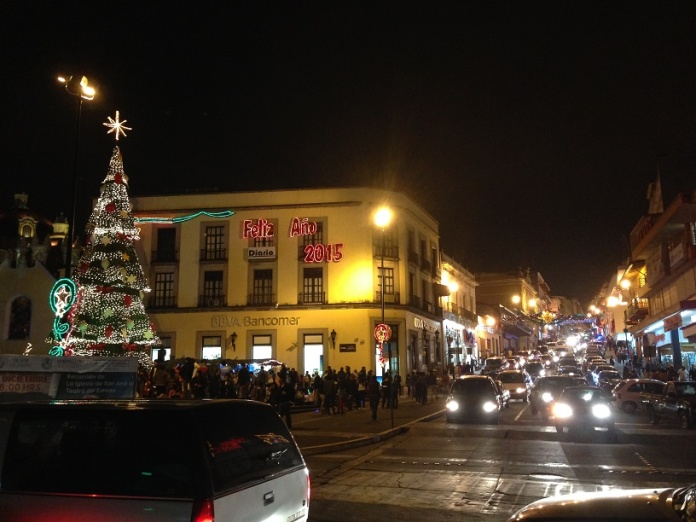 The tree in the Centro.