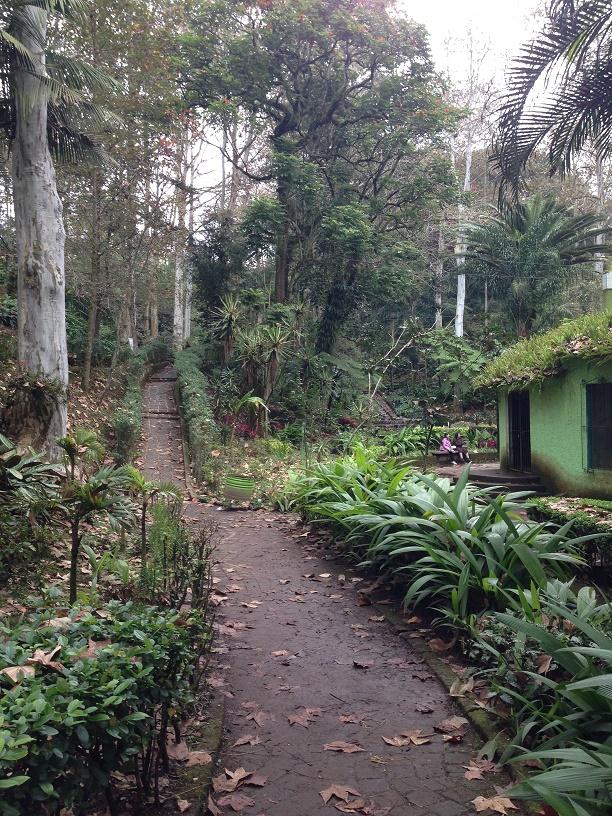 A trail in the same public park.