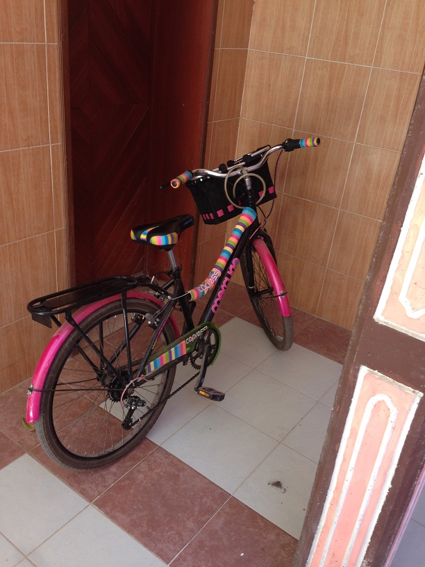 Also, just because the hotels are a little basic doesn't mean they can't have stylin' bikes.